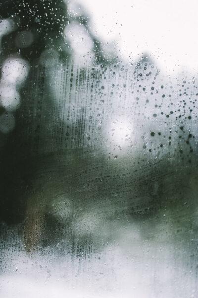Zarosené okno